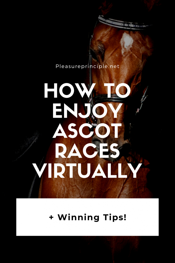 How to enjoy ascot races virtually, [+ Winning Tips!]
