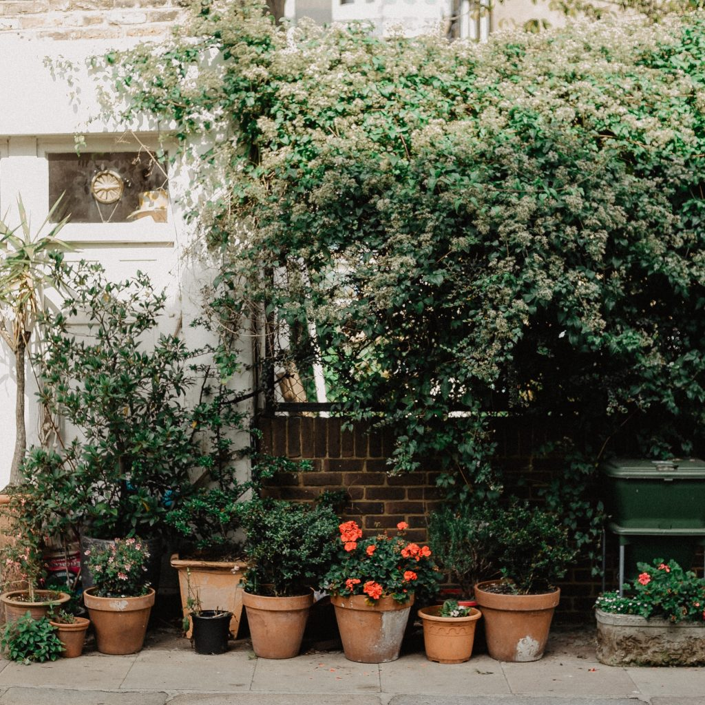 Plan Potted Plants Wisely