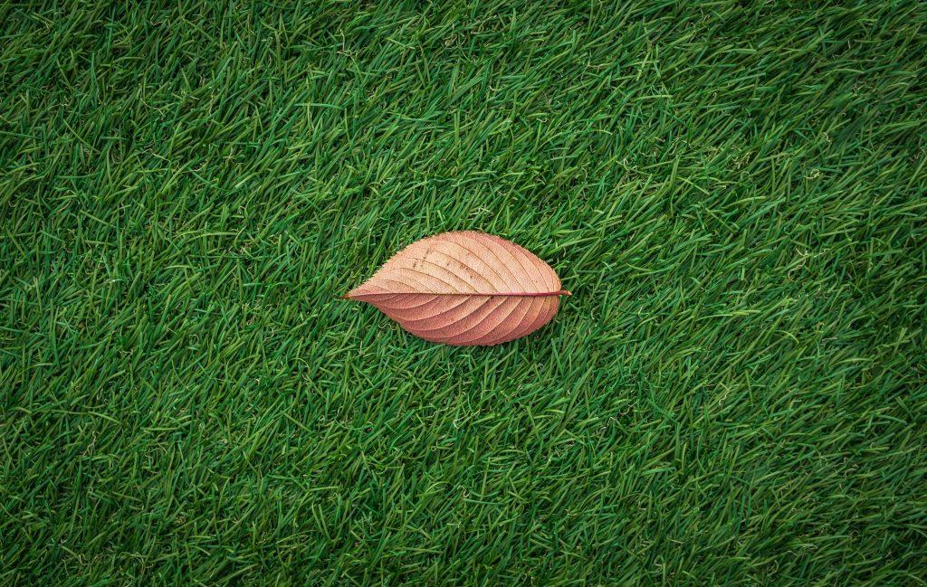 Lay cheap artificial grass